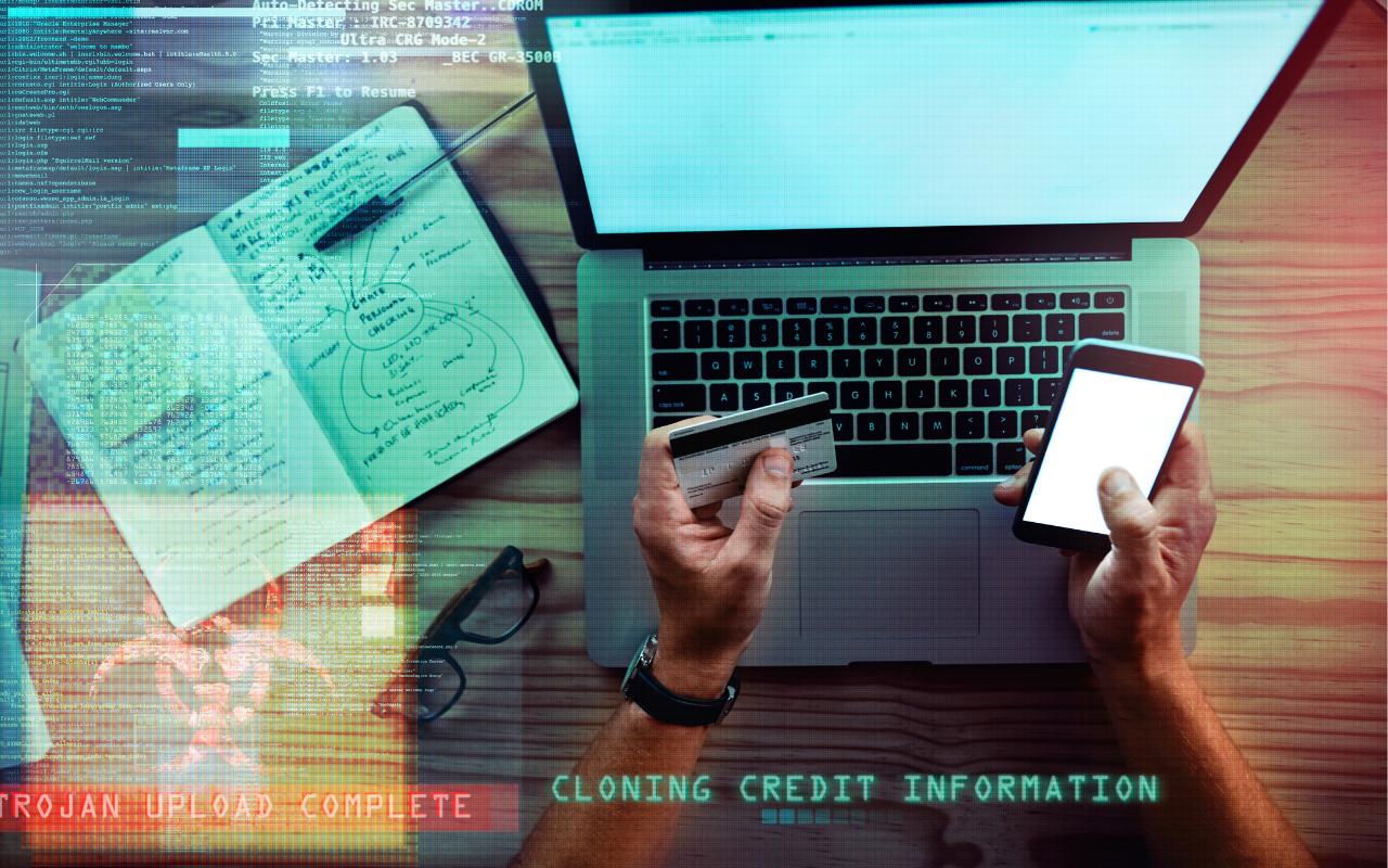 Credit Card Fraudster